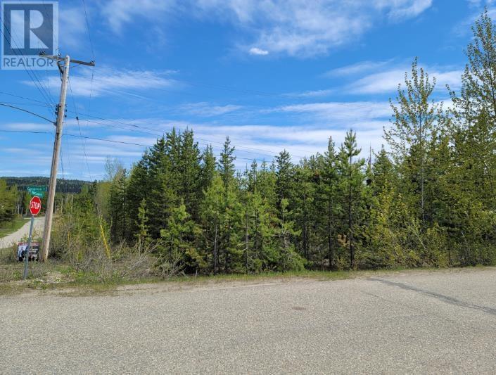 Lot 1 Cinnamon Street, Bear Lake, British Columbia  V0J 3G0 - Photo 1 - R2585329
