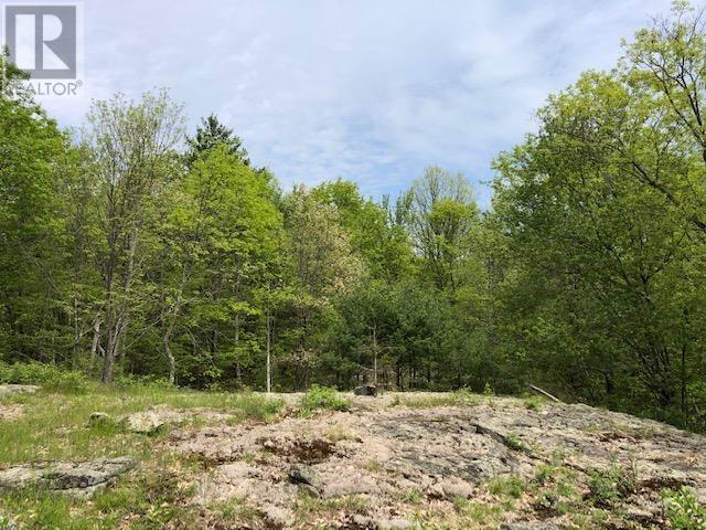 1583 Fourth Lake Rd, Parham, Ontario  K0H 2H0 - Photo 12 - K21003187