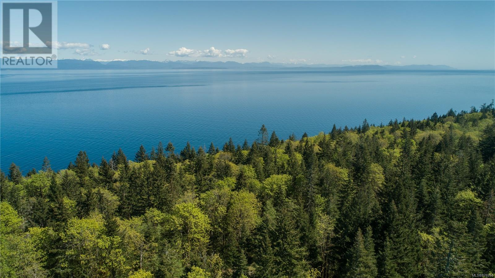 MLS® #876994 - Courtenay For sale Image #3