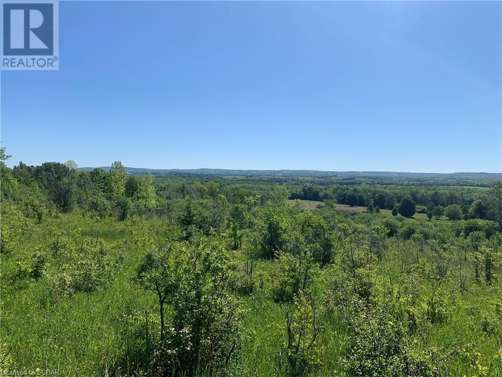 Lt 20 3rd C Line, Grey Highlands, Ontario  N0C 1G0 - Photo 2 - 40121278