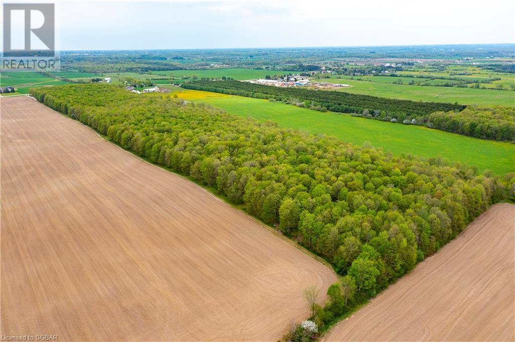 408145 4 Highway, Maxwell, Ontario  N0C 1M0 - Photo 44 - 40118326
