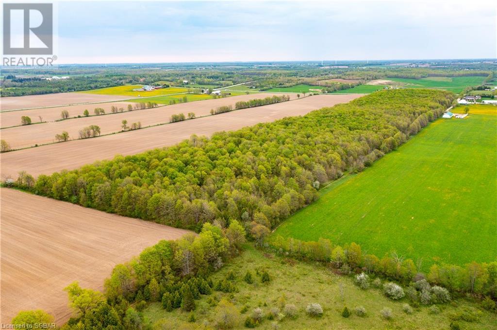 408145 4 Highway, Maxwell, Ontario  N0C 1M0 - Photo 46 - 40118326