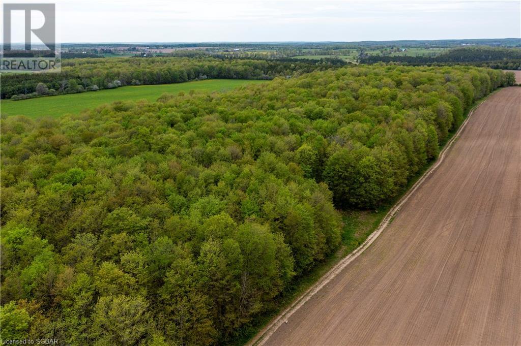 408145 4 Highway, Maxwell, Ontario  N0C 1M0 - Photo 40 - 40118326
