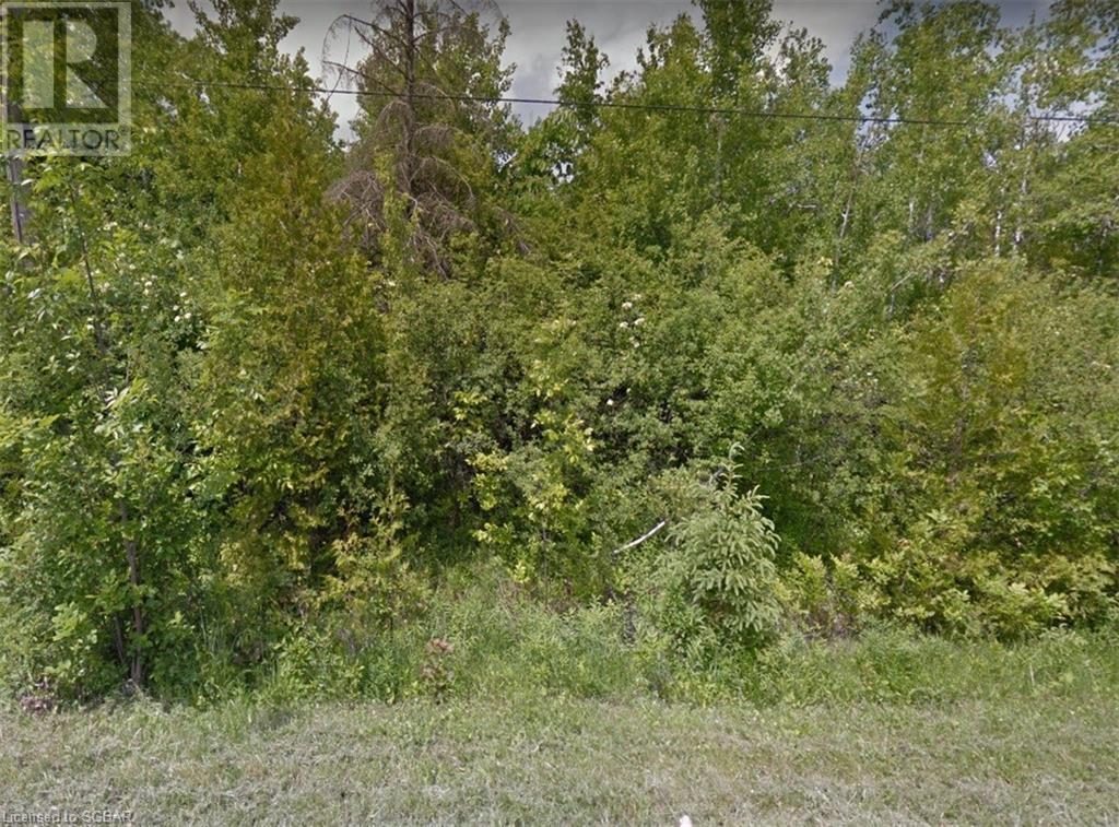 27 Braeside Street, Collingwood, Ontario  L9Y 3Z1 - Photo 1 - 40121349