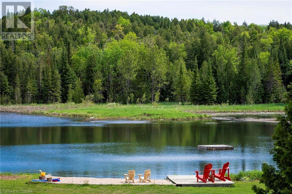634673 Pretty River Road, Grey Highlands, Ontario  N0C 1M0 - Photo 3 - 40122115