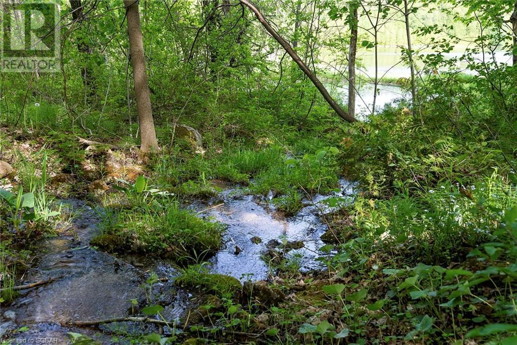 634673 Pretty River Road, Grey Highlands, Ontario  N0C 1M0 - Photo 41 - 40122115