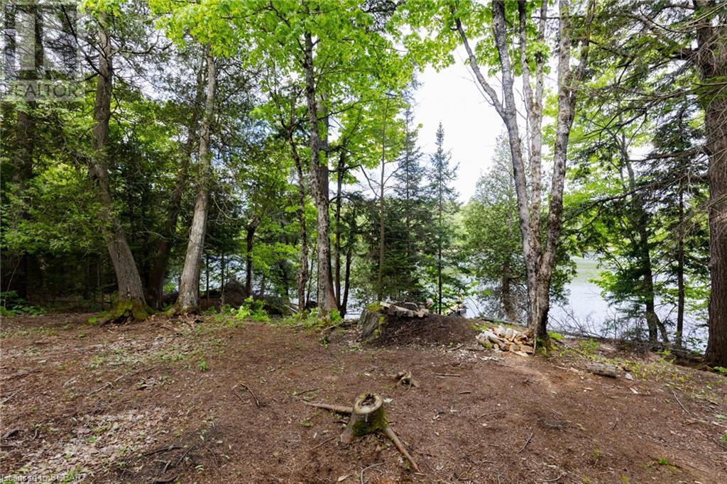 214 Lorimer Lake, Whitestone, Ontario  P0A 1G0 - Photo 9 - 40122444