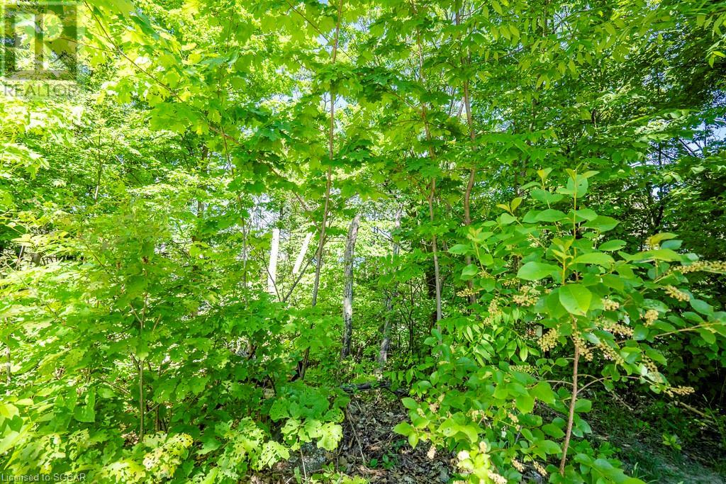 92 Shanahan Road, Penetanguishene, Ontario  L9M 1P1 - Photo 6 - 40060548