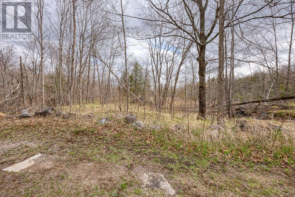 13402 Highway 38, Central Frontenac, Ontario  K0H 2P0 - Photo 8 - K21003692