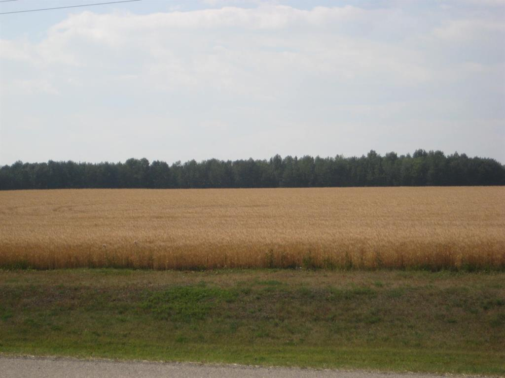 Se 20 30 1 W5 Highway 2a, Carstairs, Alberta  T0M 0N0 - Photo 14 - A1067588