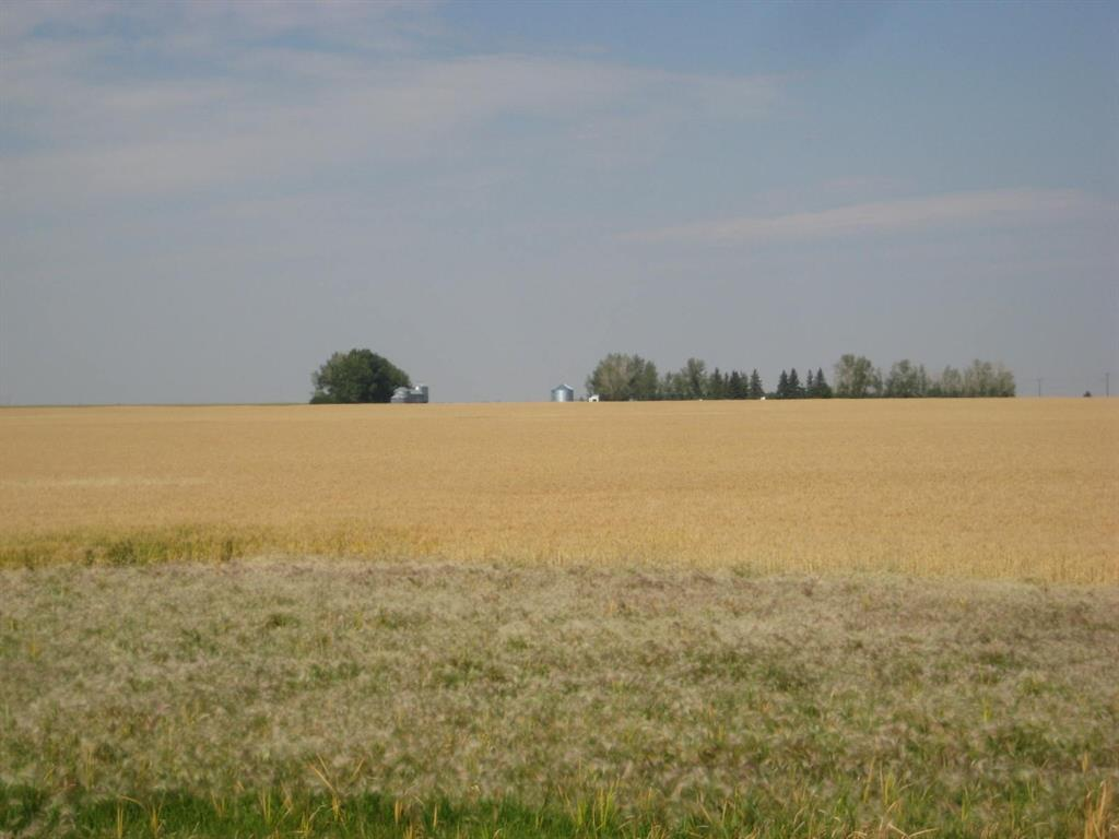 Se 20 30 1 W5 Highway 2a, Carstairs, Alberta  T0M 0N0 - Photo 3 - A1067588