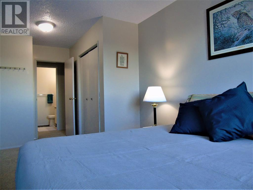205 12 Ave Sw, Slave Lake, Alberta  T0G 2A4 - Photo 17 - AW52014