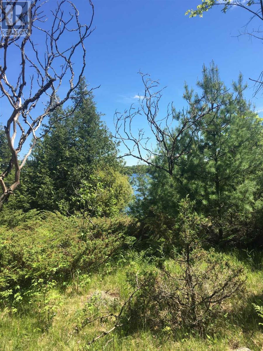 13365 Highway 38, Sharbot Lake, Ontario  K0H 2P0 - Photo 16 - K21003676