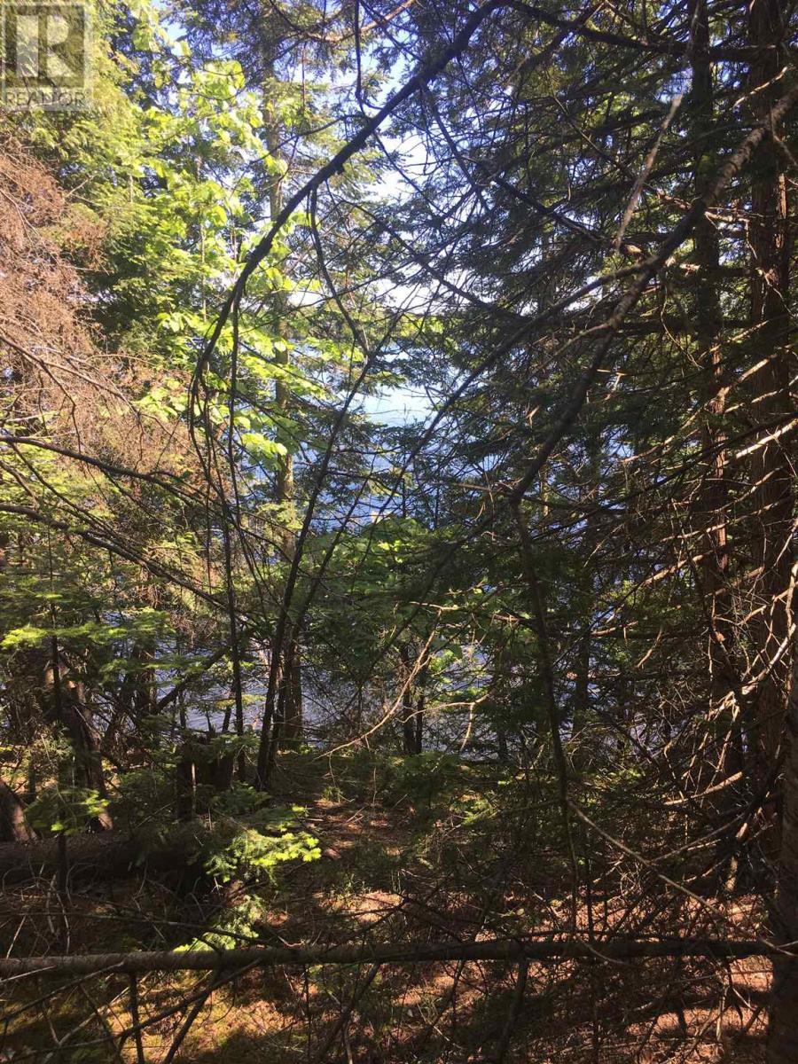 13365 Highway 38, Sharbot Lake, Ontario  K0H 2P0 - Photo 17 - K21003676