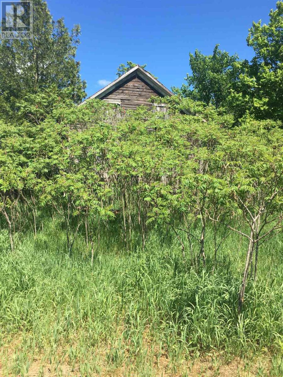13365 Highway 38, Sharbot Lake, Ontario  K0H 2P0 - Photo 21 - K21003676