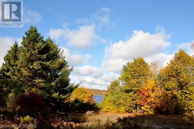1462 Old Highway 117, Baysville, Ontario  P0B 1A0 - Photo 8 - 40019175