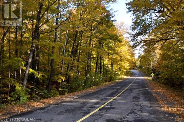 1462 Old Highway 117, Baysville, Ontario  P0B 1A0 - Photo 7 - 40019175