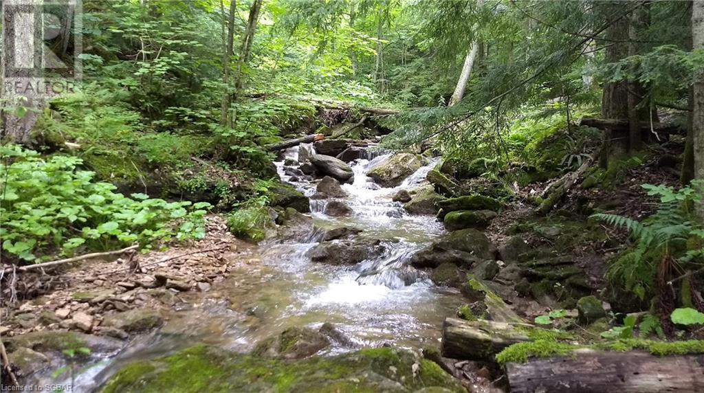 131 Osprey Heights, Grey Highlands, Ontario  N0C 1M0 - Photo 11 - 40073311