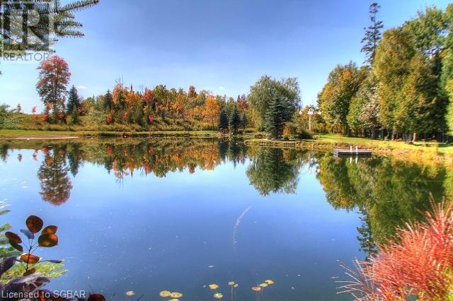 407119 4 Grey Road, Grey Highlands, Ontario  N0C 1J0 - Photo 29 - 40099518