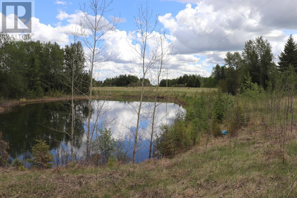 Range Road 131  16 West Highway, Rural Yellowhead County, Alberta  T0E 1S0 - Photo 1 - A1117373
