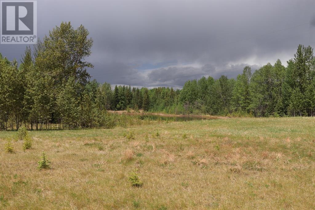 Range Road 131  16 West Highway, Rural Yellowhead County, Alberta  T0E 1S0 - Photo 10 - A1117373