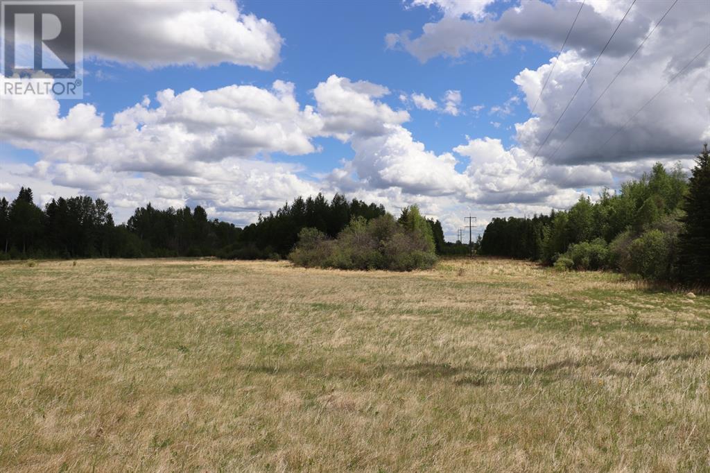 Range Road 131  16 West Highway, Rural Yellowhead County, Alberta  T0E 1S0 - Photo 11 - A1117373