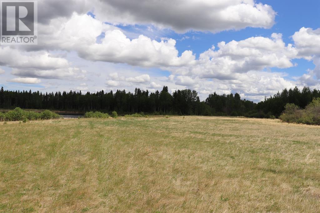 Range Road 131  16 West Highway, Rural Yellowhead County, Alberta  T0E 1S0 - Photo 12 - A1117373
