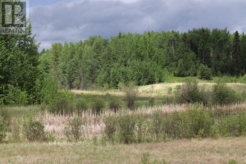 Range Road 131  16 West Highway, Rural Yellowhead County, Alberta  T0E 1S0 - Photo 13 - A1117373