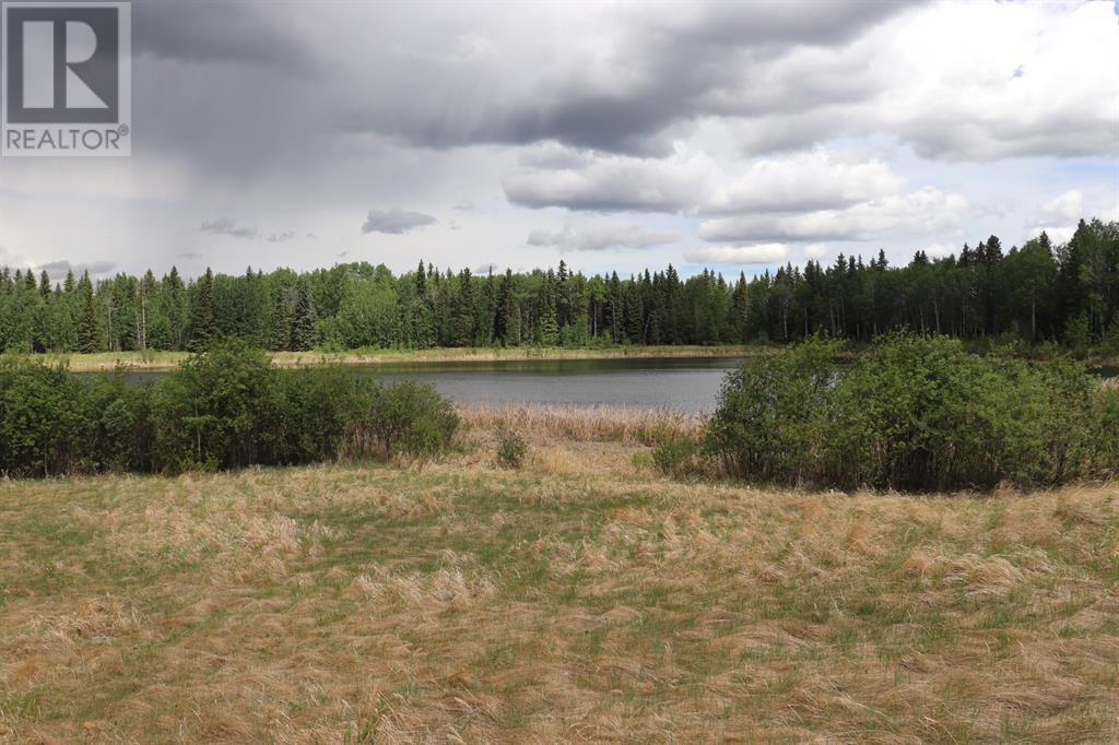 Range Road 131  16 West Highway, Rural Yellowhead County, Alberta  T0E 1S0 - Photo 14 - A1117373