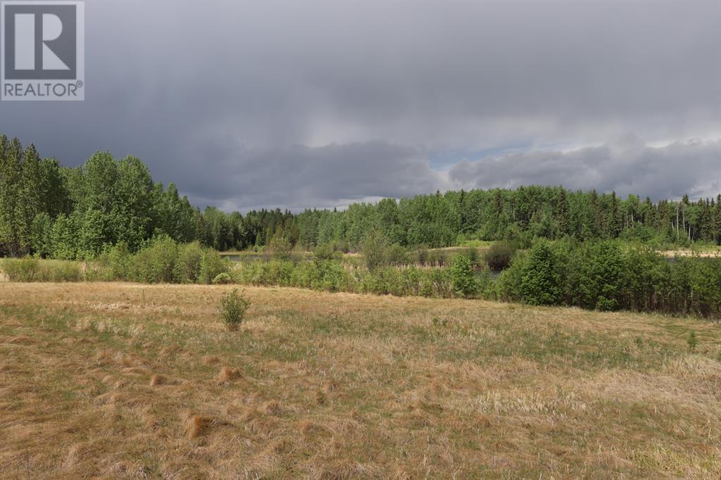 Range Road 131  16 West Highway, Rural Yellowhead County, Alberta  T0E 1S0 - Photo 15 - A1117373