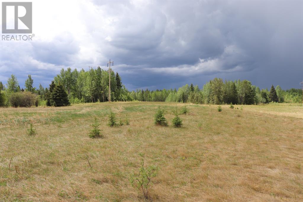 Range Road 131  16 West Highway, Rural Yellowhead County, Alberta  T0E 1S0 - Photo 16 - A1117373