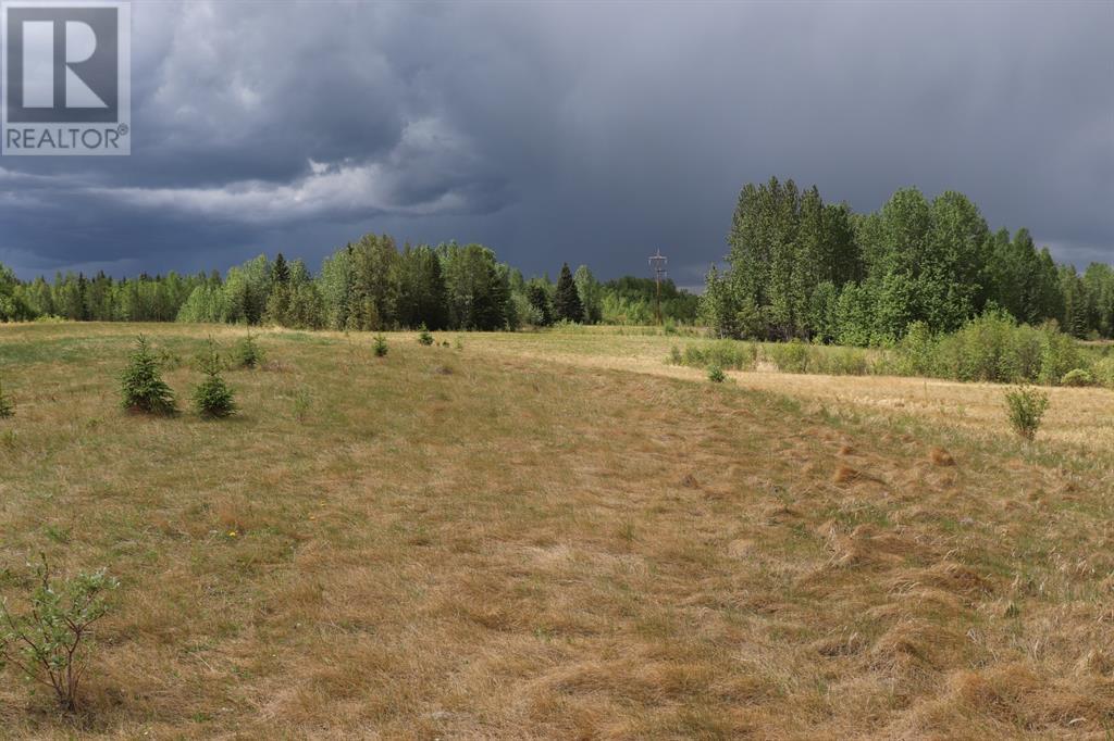 Range Road 131  16 West Highway, Rural Yellowhead County, Alberta  T0E 1S0 - Photo 17 - A1117373