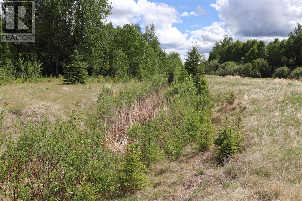 Range Road 131  16 West Highway, Rural Yellowhead County, Alberta  T0E 1S0 - Photo 18 - A1117373