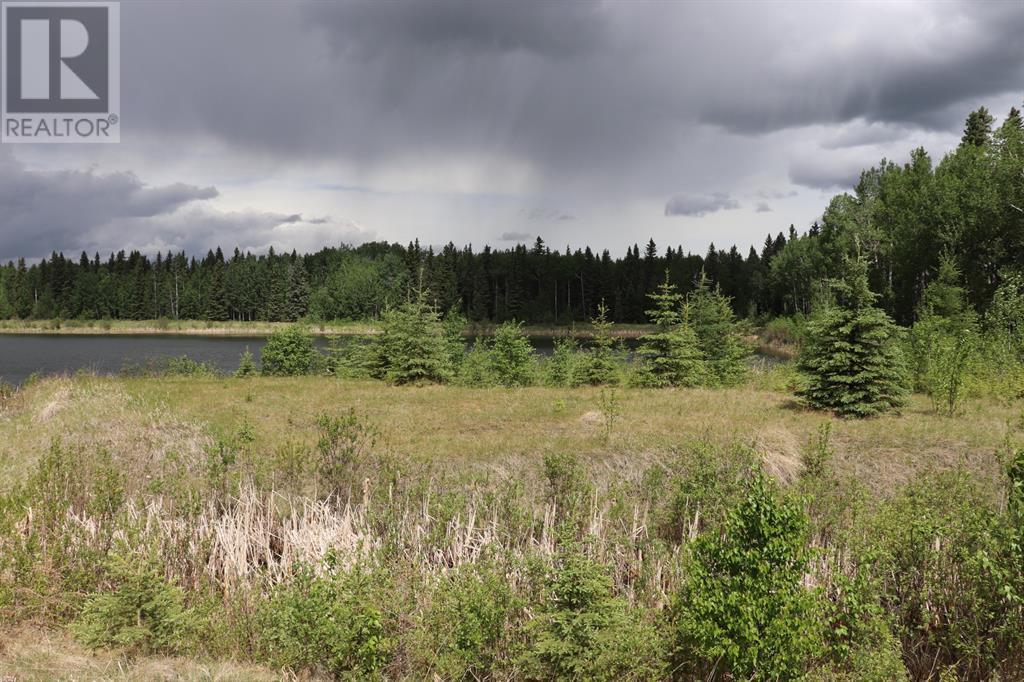 Range Road 131  16 West Highway, Rural Yellowhead County, Alberta  T0E 1S0 - Photo 19 - A1117373