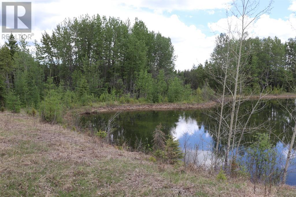 Range Road 131  16 West Highway, Rural Yellowhead County, Alberta  T0E 1S0 - Photo 2 - A1117373