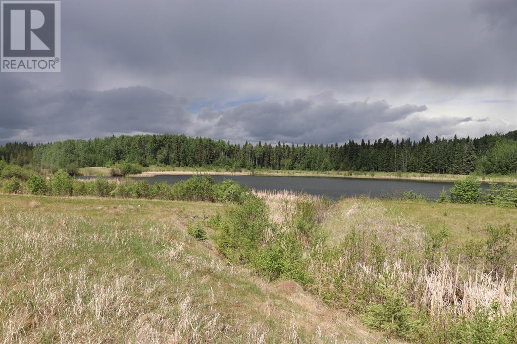 Range Road 131  16 West Highway, Rural Yellowhead County, Alberta  T0E 1S0 - Photo 20 - A1117373