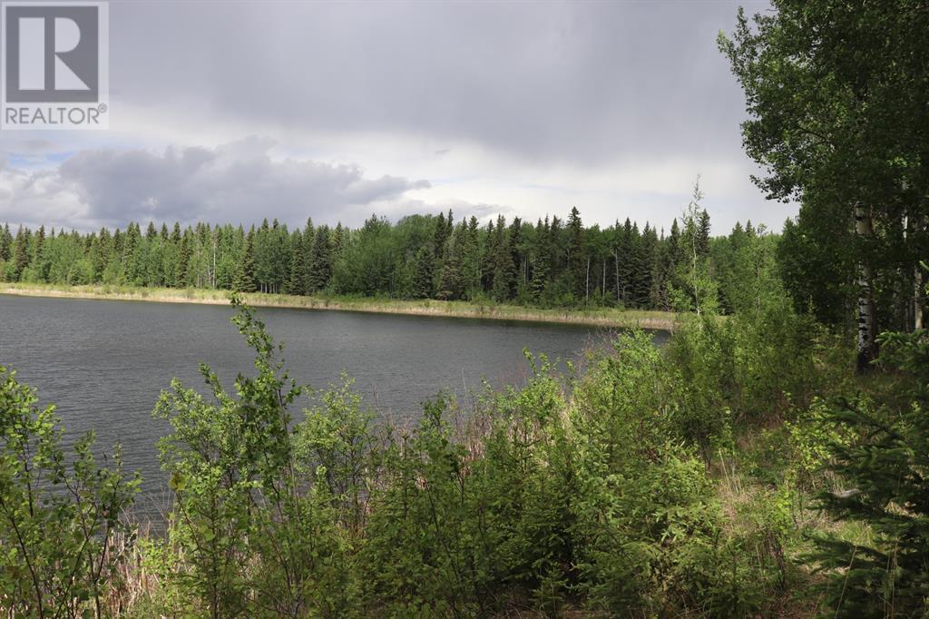Range Road 131  16 West Highway, Rural Yellowhead County, Alberta  T0E 1S0 - Photo 21 - A1117373