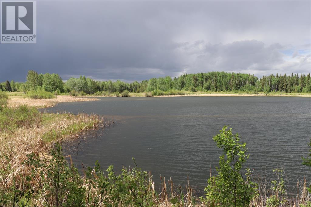 Range Road 131  16 West Highway, Rural Yellowhead County, Alberta  T0E 1S0 - Photo 22 - A1117373
