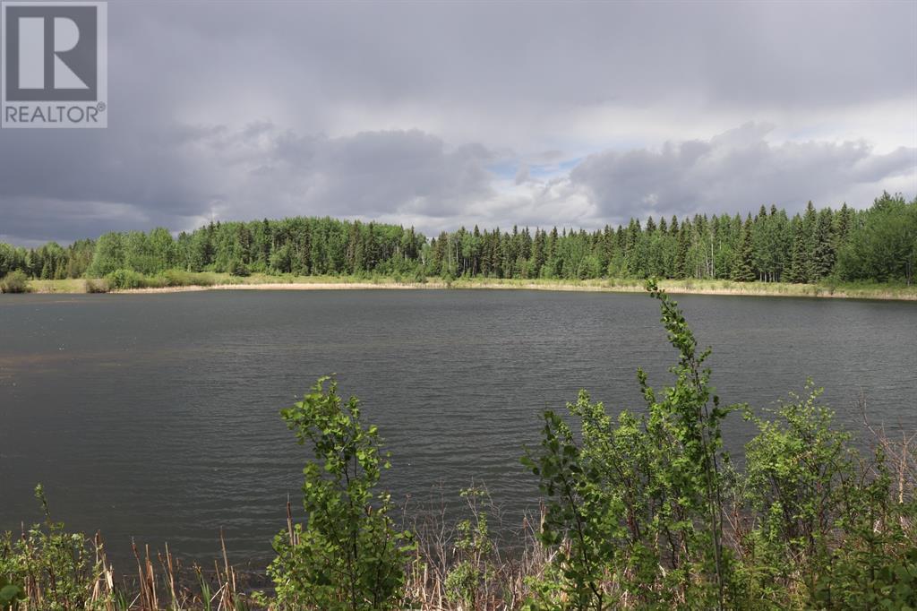 Range Road 131  16 West Highway, Rural Yellowhead County, Alberta  T0E 1S0 - Photo 23 - A1117373