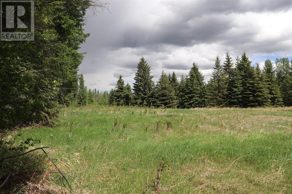 Range Road 131  16 West Highway, Rural Yellowhead County, Alberta  T0E 1S0 - Photo 24 - A1117373