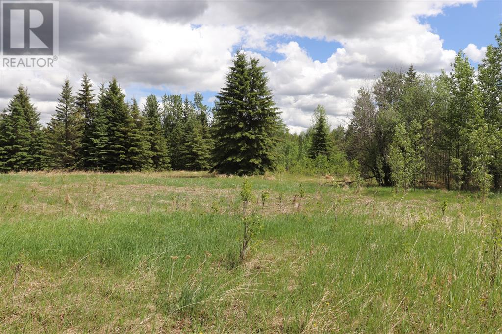 Range Road 131  16 West Highway, Rural Yellowhead County, Alberta  T0E 1S0 - Photo 25 - A1117373