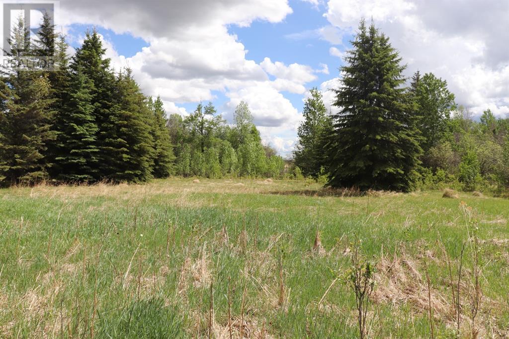 Range Road 131  16 West Highway, Rural Yellowhead County, Alberta  T0E 1S0 - Photo 26 - A1117373