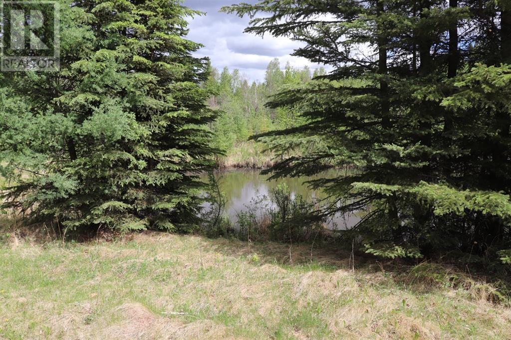 Range Road 131  16 West Highway, Rural Yellowhead County, Alberta  T0E 1S0 - Photo 27 - A1117373