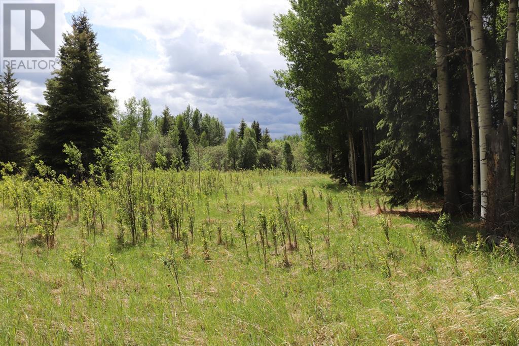 Range Road 131  16 West Highway, Rural Yellowhead County, Alberta  T0E 1S0 - Photo 29 - A1117373