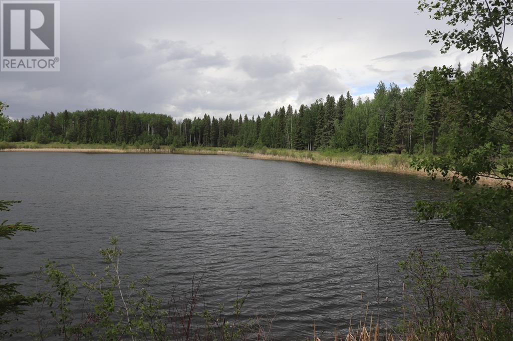 Range Road 131  16 West Highway, Rural Yellowhead County, Alberta  T0E 1S0 - Photo 32 - A1117373