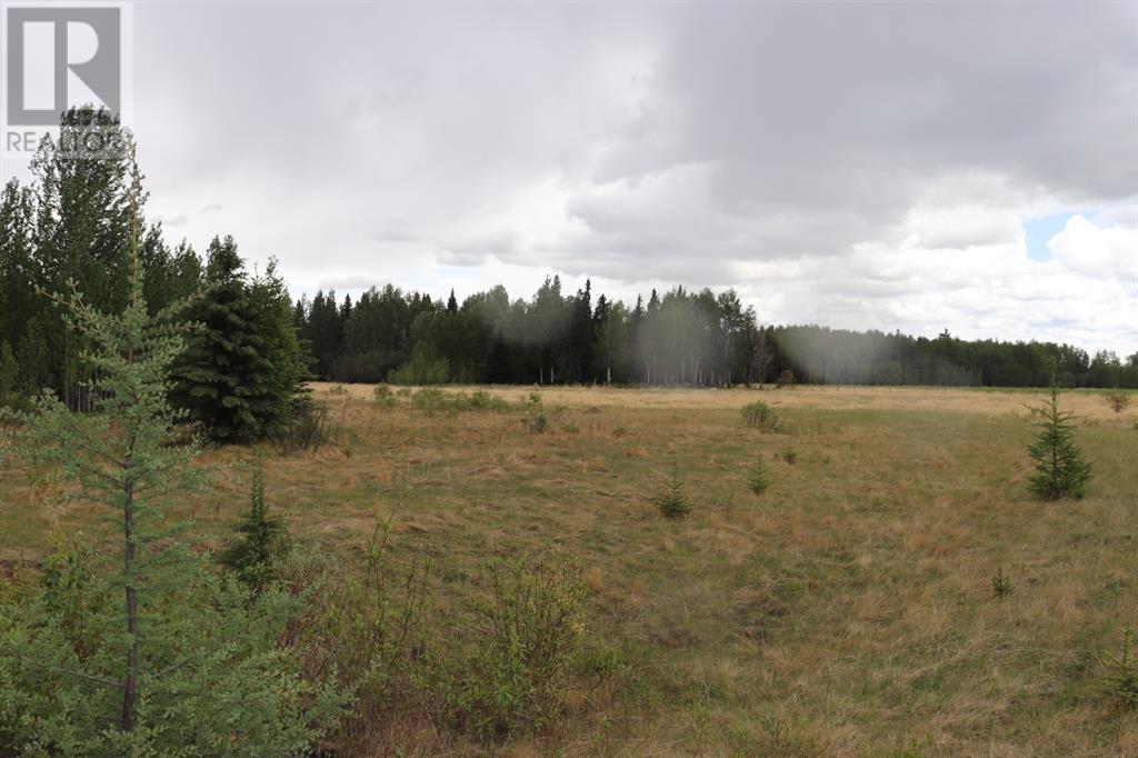 Range Road 131  16 West Highway, Rural Yellowhead County, Alberta  T0E 1S0 - Photo 33 - A1117373