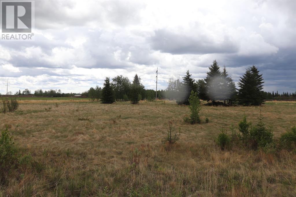 Range Road 131  16 West Highway, Rural Yellowhead County, Alberta  T0E 1S0 - Photo 34 - A1117373