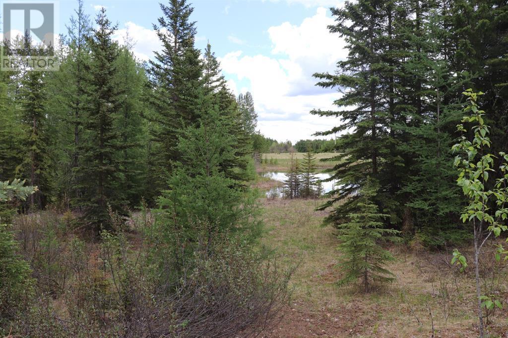 Range Road 131  16 West Highway, Rural Yellowhead County, Alberta  T0E 1S0 - Photo 5 - A1117373