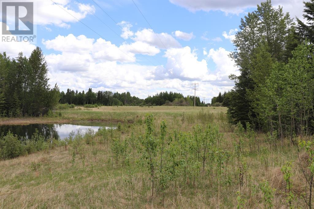 Range Road 131  16 West Highway, Rural Yellowhead County, Alberta  T0E 1S0 - Photo 6 - A1117373