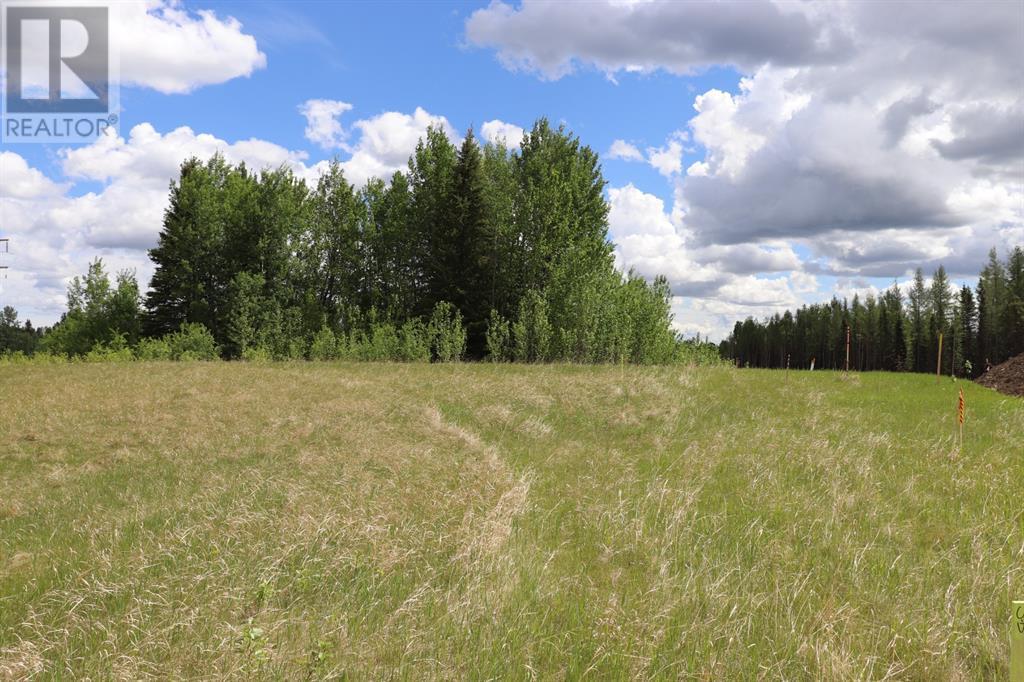 Range Road 131  16 West Highway, Rural Yellowhead County, Alberta  T0E 1S0 - Photo 7 - A1117373